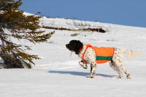 Lucas på fjelltur før båndtvangen Foto: Roar Hansen