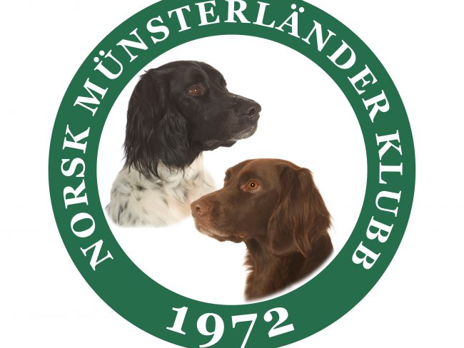 Norsk Münsterländer klubb